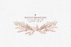高清手绘橄榄枝叶PNG素材 Rough Branches插图3
