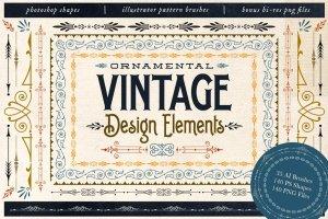 复古装饰元素AI笔刷+PS图形 Ornamental Vintage Design Elements插图1