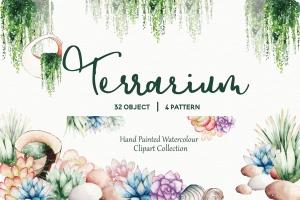 多肉植物水彩手绘图案PNG图片素材 Succulent Terrarium Watercolor插图1