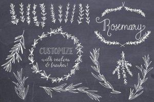 婚礼请柬迷迭香手绘剪贴画及矢量图  Rosemary Clip Art & Vectors插图4