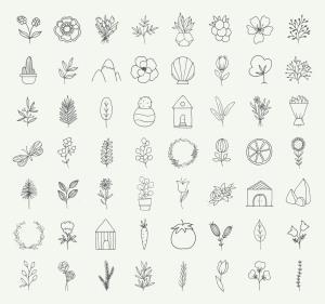 自然与植物手绘涂鸦矢量图形设计素材 Nature and Botanical Hand Drawn Doodles插图3