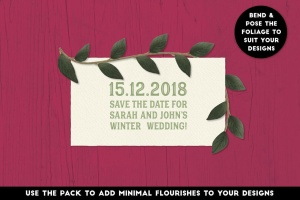 逼真植物花卉图案AI笔刷 The Vector Florist – Brushes: Winter插图(4)