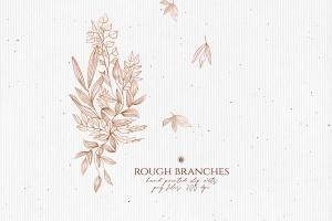 高清手绘橄榄枝叶PNG素材 Rough Branches插图6