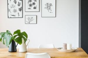 20+草药和香料手绘图案设计素材 Hand Drawn Herbs & Spices插图(7)