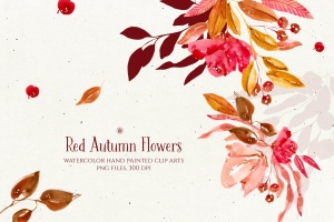 秋天红色水彩手绘花卉剪贴画PNG素材 Red Autumn Flowers插图1