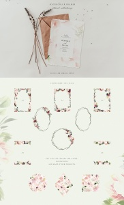 腮红色水彩花卉手绘高清PNG素材 Watercolor Blush & Plum插图3