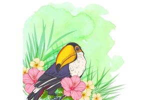 巨嘴鸟&花卉水彩手绘矢量插画素材 Tropical Vibes Vector Design Kit插图4