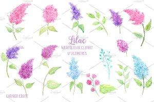 水彩丁香花剪贴画素材 Watercolor Lilac Flowers插图2