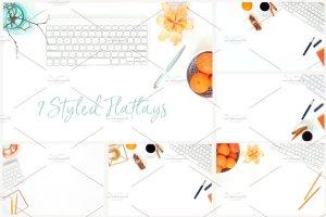 冬天简约风格办公场景背景 Tangerine Winter Bundle插图4
