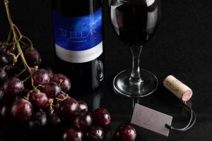 葡萄酒洋酒酒瓶外观标签设计样机模板12 Wine Bottle Mockup 12插图1