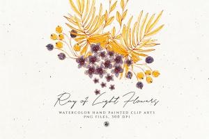 浅色优雅水彩手绘花卉剪贴画PNG素材 Ray of Light Flowers插图1