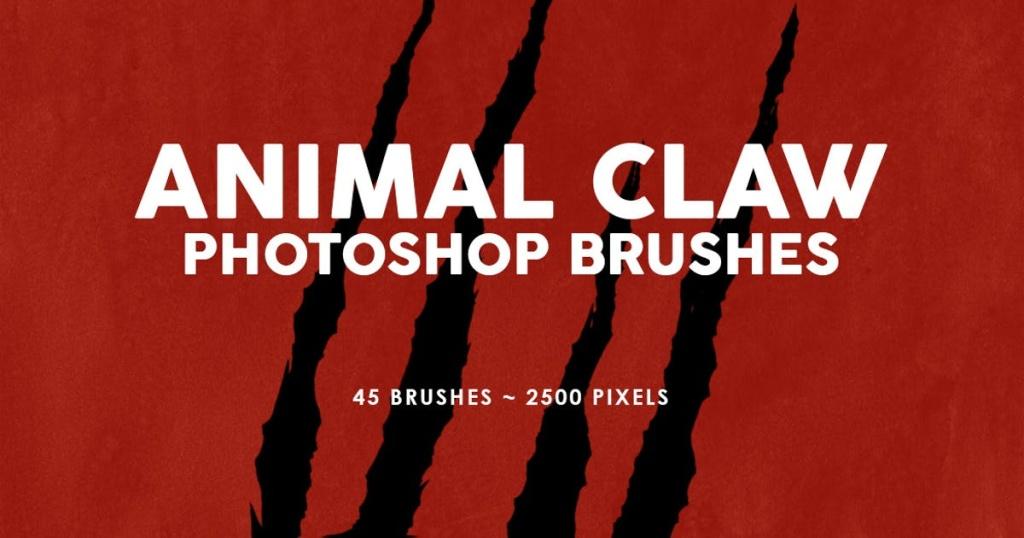 45个动物撕裂抓痕PS印章笔刷 45 Animal Claw Photoshop Stamp Brushes插图
