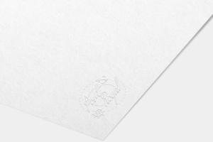纸张印刷品Logo标志样机模板v1 Paper Logo Mock Up Pack vol 01插图4