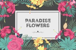 热带花卉和花束手绘插画素材 Paradise Flowers插图1