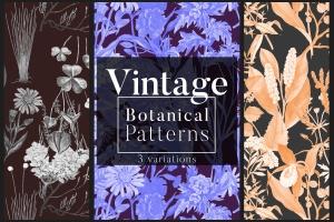 高清复古植物图案背景设计素材 Vintage Botanical Patterns插图1