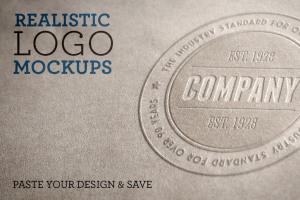 Logo 展示样机模版 Realistic Logo Mockups Volume 1插图1