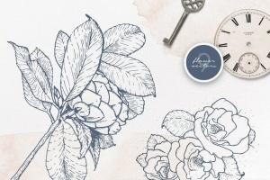 40款水彩图形PS画笔笔刷&矢量花卉插画素材 Cloudy Watercolor Decorations Set插图3