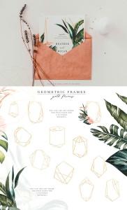 热带植物水彩手绘图案设计素材套装 Tropics & Coral Watercolor Set插图6