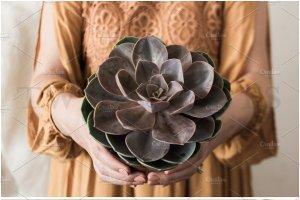 婚礼场景照片样机合集 Ultimate Wedding Stock Photo Bundle插图15