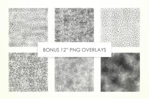 点画设计必备的散点和点画形状画笔PS笔刷插图2