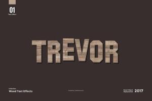 8款超逼真木纹效果PS字体样式 8 Wood Text Effects插图3