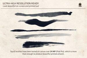 仿鱿鱼触须形状笔画Procreate笔刷 Squid Brush Pack for Procreate插图6