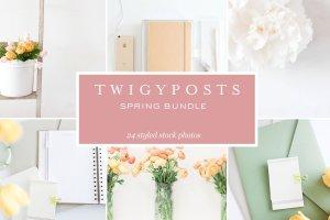 小清新女性主题场景背景照片集 Spring Styled Stock Photos插图1