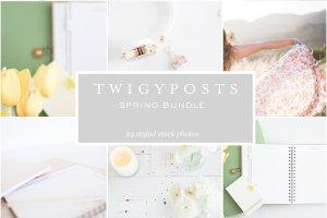 小清新女性主题场景背景照片集 Spring Styled Stock Photos插图4