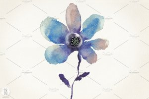 花朵、鸟儿、蝴蝶及乡村背景元素  Aquarelle blue flowers插图3