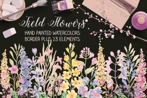 水彩手绘花卉边框&元素PNG素材 Field Flowers: Watercolor Border plus Elements插图(1)