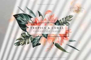 热带植物水彩手绘图案设计素材套装 Tropics & Coral Watercolor Set插图1
