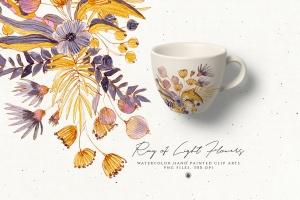 浅色优雅水彩手绘花卉剪贴画PNG素材 Ray of Light Flowers插图3