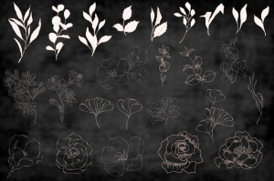 腮红色水彩手绘叶子图案剪贴画PNG素材 Blush Foliage Clip Art Bundle插图9