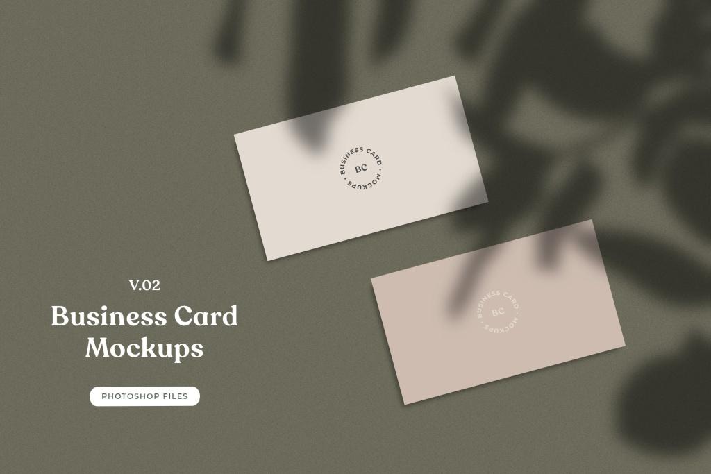 企业名片平铺视图植物阴影背景样机模板v02 ADL – Business Card Mockup.v02插图